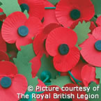 Poppies - Remembrance Day - © The Royal British Legion